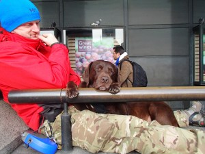 I love random photos like this. This dog was so so content to sleep on this ledge with his owner outside Westminster.